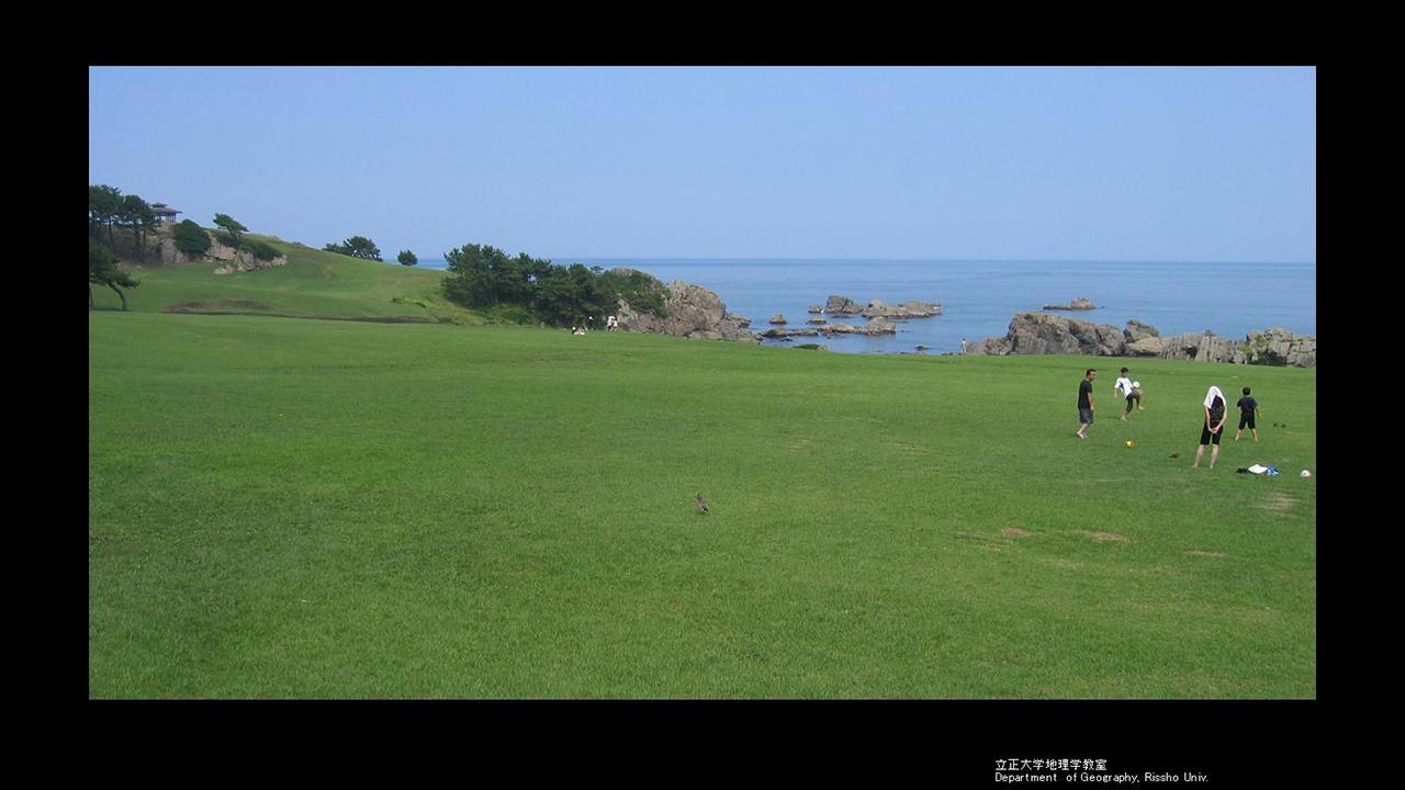 種差海岸の天然芝地