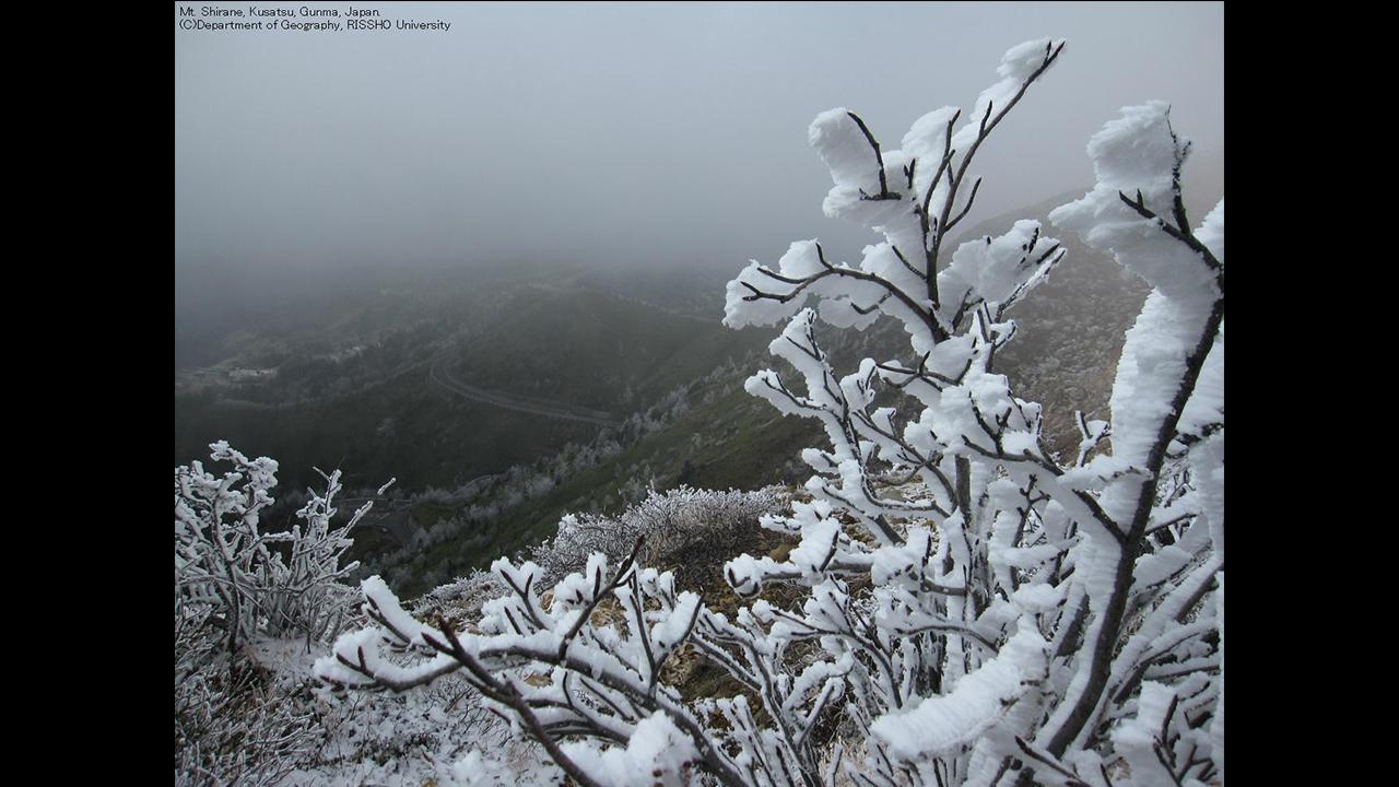 草津白根山の霧氷