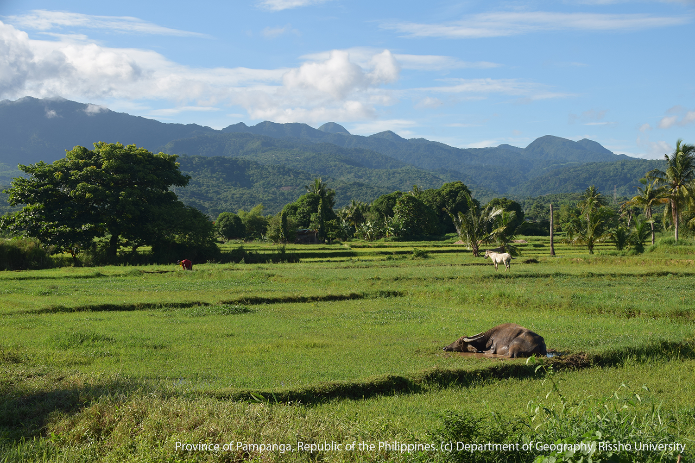 Carabao:役畜とヒトが織りなす景観・フィリピン